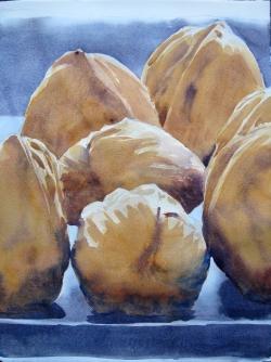 Walnuts7