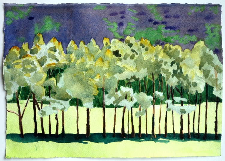 row-of-trees-3